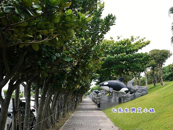 12 華棋168號賞鯨之旅