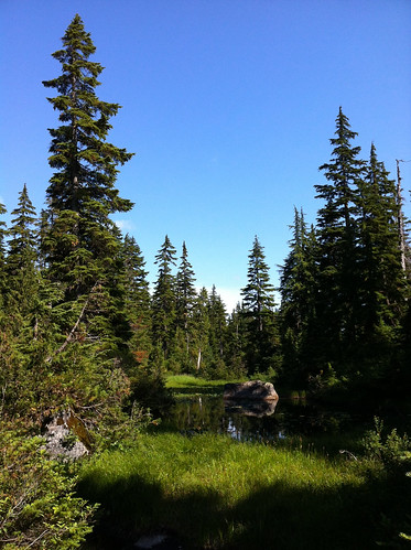 Yew Lake Trail (Cypress Mountain, West Vancouver)