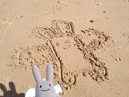 Angel Bunny in the sand