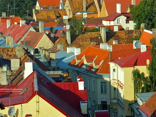 Toits de Tallinn