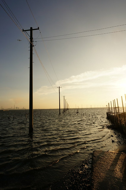 utility poles into the sea 01