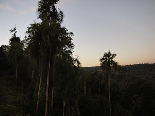 Reserva del Moconá