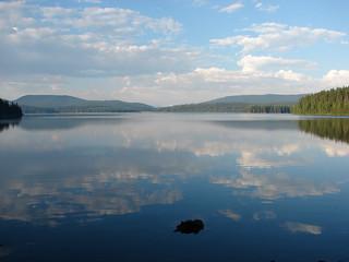 Timothy Lake