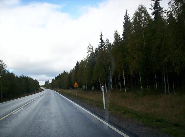 Carretera y señal de renos