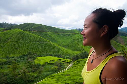 Runaway Juno Malaysia-Cameron-Highlands