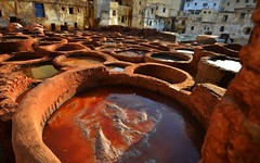 Tanneries 3