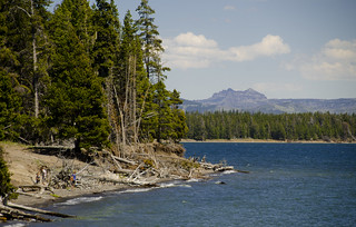 The Shores of Lake Yellowstone