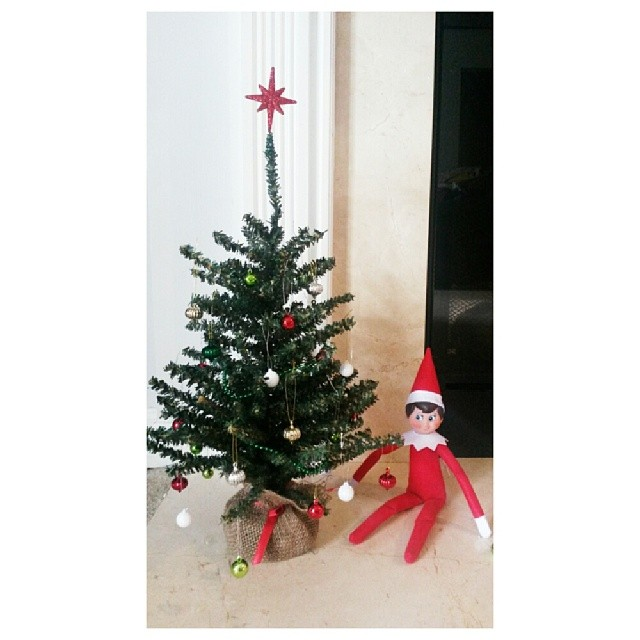 Snowflake added some *elf-sized* Christmas cheer to our home last night. #jbelfontheshelf #elfontheshelf