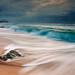 Stormy Morning on Beach