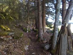 Hovskogen: Bunnstien , Askim Østfold, Norway