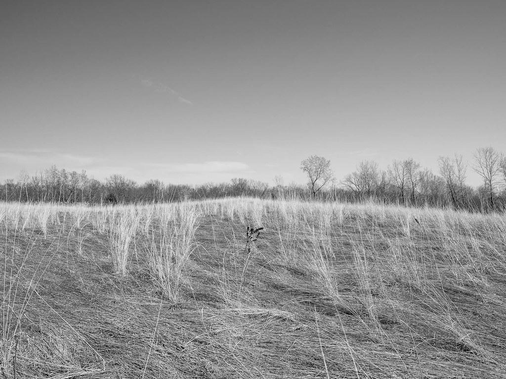 Frontenac Prairie