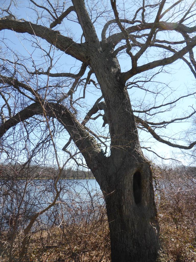 Belmont Lake State Park Suffolk County New York