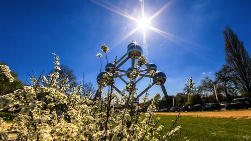 atomium belgium belgique bruxelles bélgica landscape canon 8mm neewerpro hensyasmine