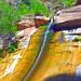 Zion National Park, Summer