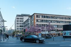 Frankfurt Streets