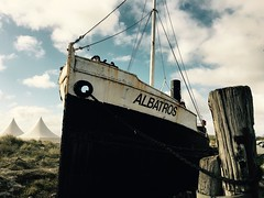 Albatros - run aground