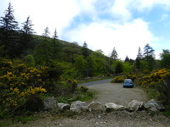 My 7h spin - near Glenmalure