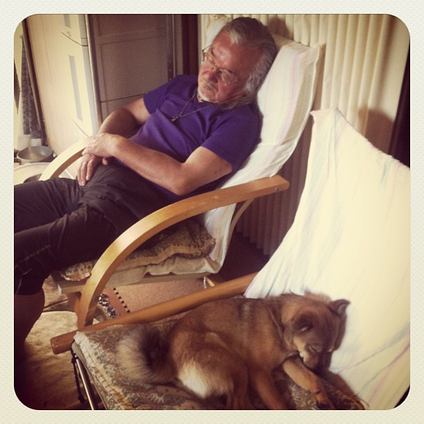 Happy birthday to my daddy Dad and Anzu fall asleep on the chairs:)