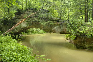 Rock Bridge, Swift Camp Creek, Daniel Boone National Forest, Wolfe Co, KY