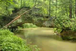 Rock Bridge, Swift Camp Creek, Daniel Boone National Forest, Wolfe Co, KY