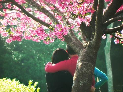 De um lado a poesia, o vento, a saudade by Odete de Paula