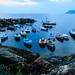 Riomaggiore Bay #1