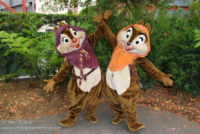 Meeting Ewok Chip and Dale!