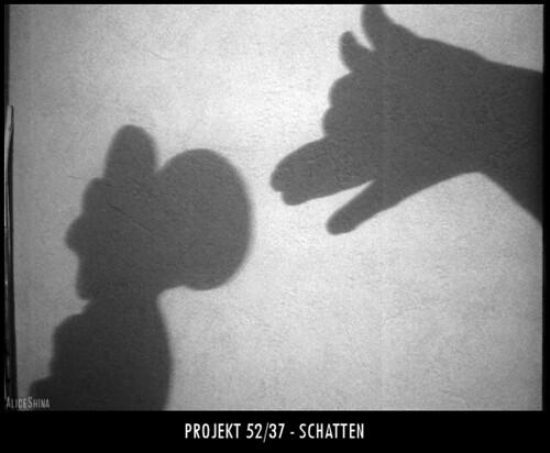 Projekt 52/37 - Schatten