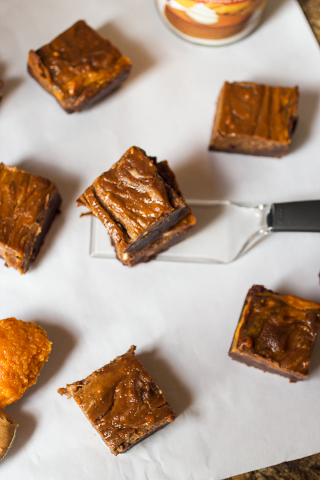 Pumpkin Biscoff Swirl Brownies