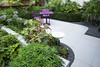 Modern, urban with lush planting