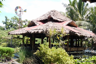 penalosa-farms-negros-occidental.jpg