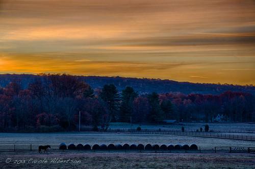 november horse sunrise landscape dawn cool farm pa bucks goldenhour week45 themelandscape dawnrising 52in2013
