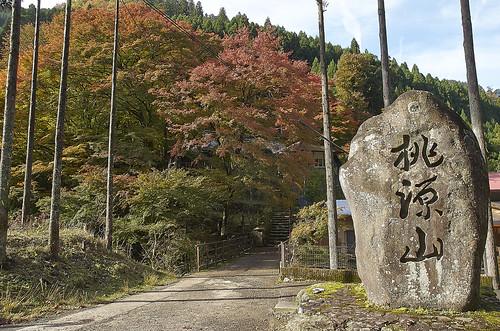 【写真】紅葉 : 桃源山地蔵院