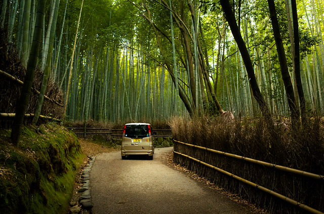 the path of bamboo, revisited #25 (near Tenryuu-ji temple, Kyoto)