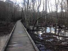 Gunby Creek Boardwalk