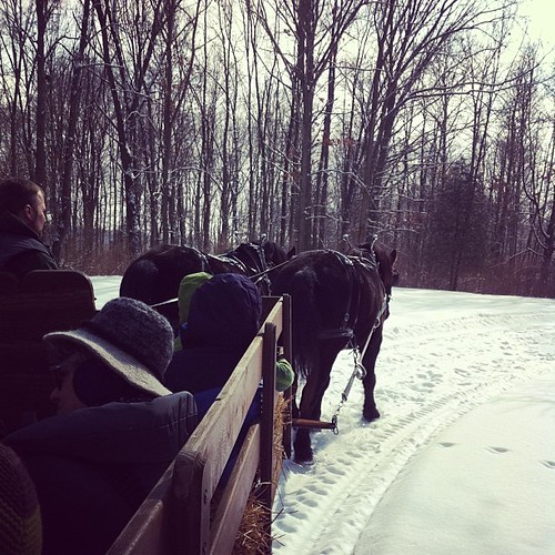 Winter sleigh ride!