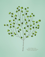Family tree with names art sea green brown present day green leaves divorce