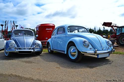Grey or blue ?