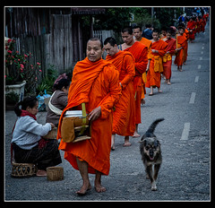 Monks Luang Prabang Explored