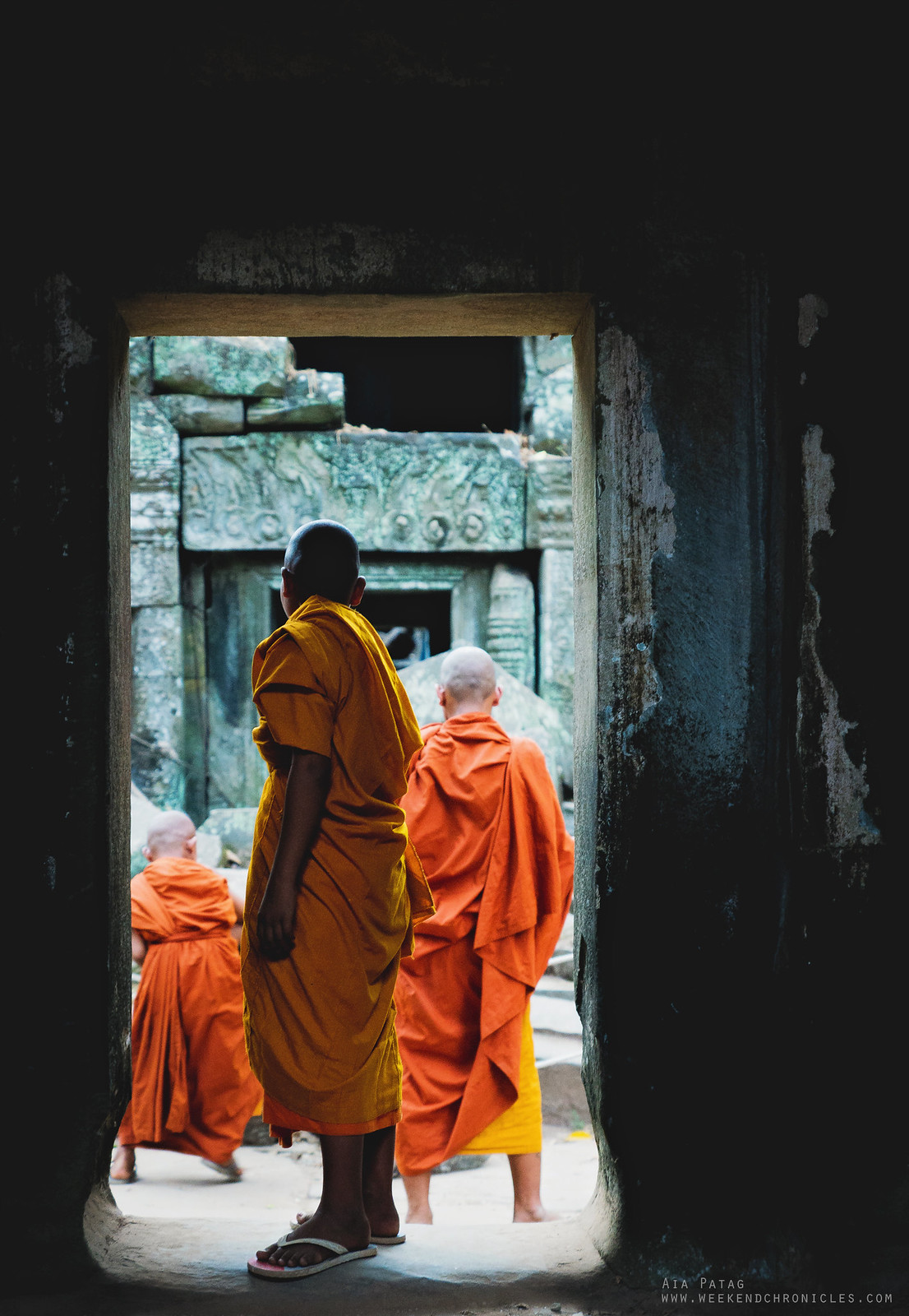 A young monk watching over his fellow monks