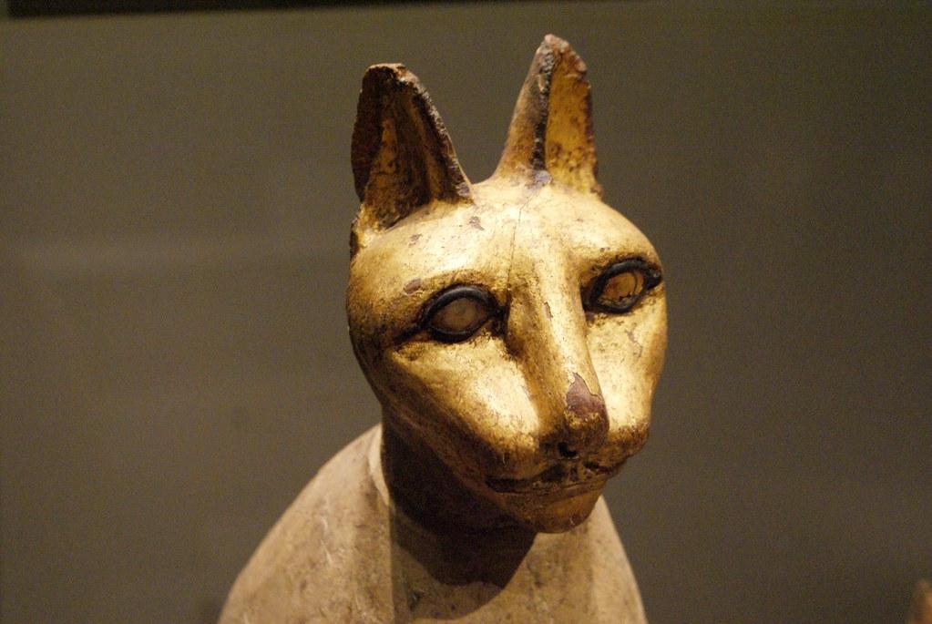 Tête de chat dans le musée egyptien de Turin.