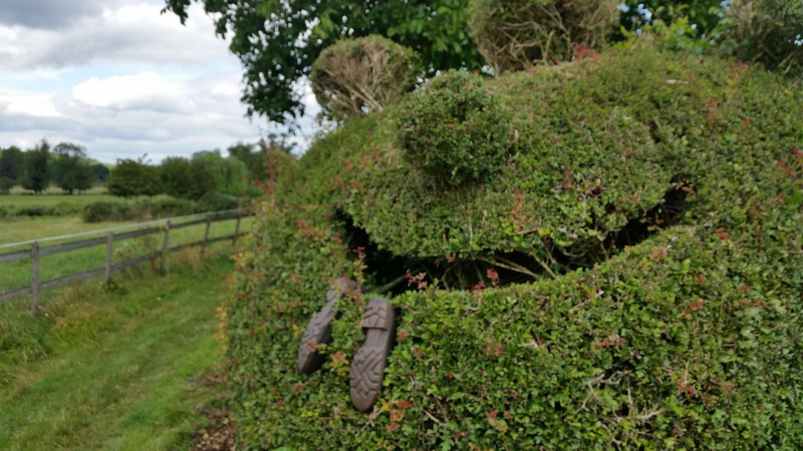 Midsomer murders walk, Henley circular via Turville