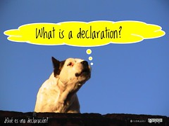 What is a declaration? = ¿Qué es una declaración?