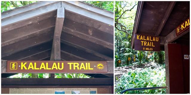 kauai trail 12