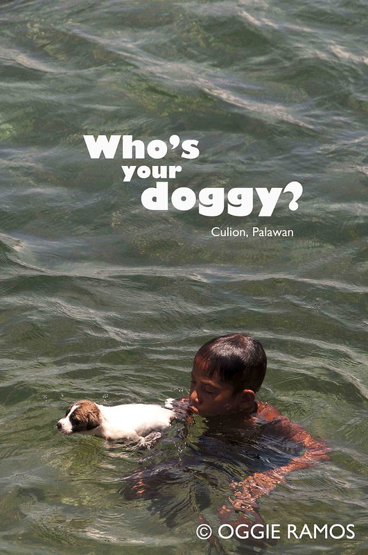 Who's Your Doggy