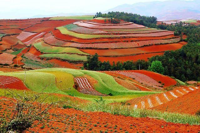Dongchuan Red Land Tour