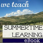 we teach summer ebook 2013