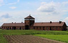 Auschwitz-Birkenau (Auschwitz II), Poland, Cassidy