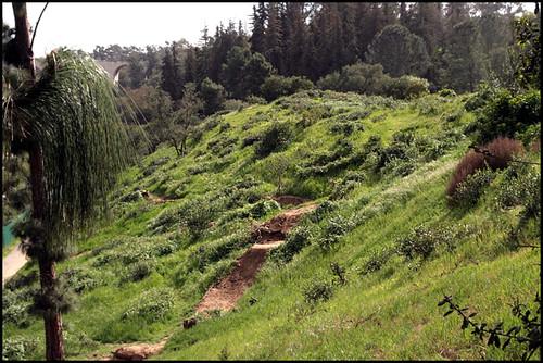 Balboa BMX Trails (10)
