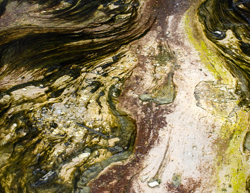 Yellowstone Abstract-1
